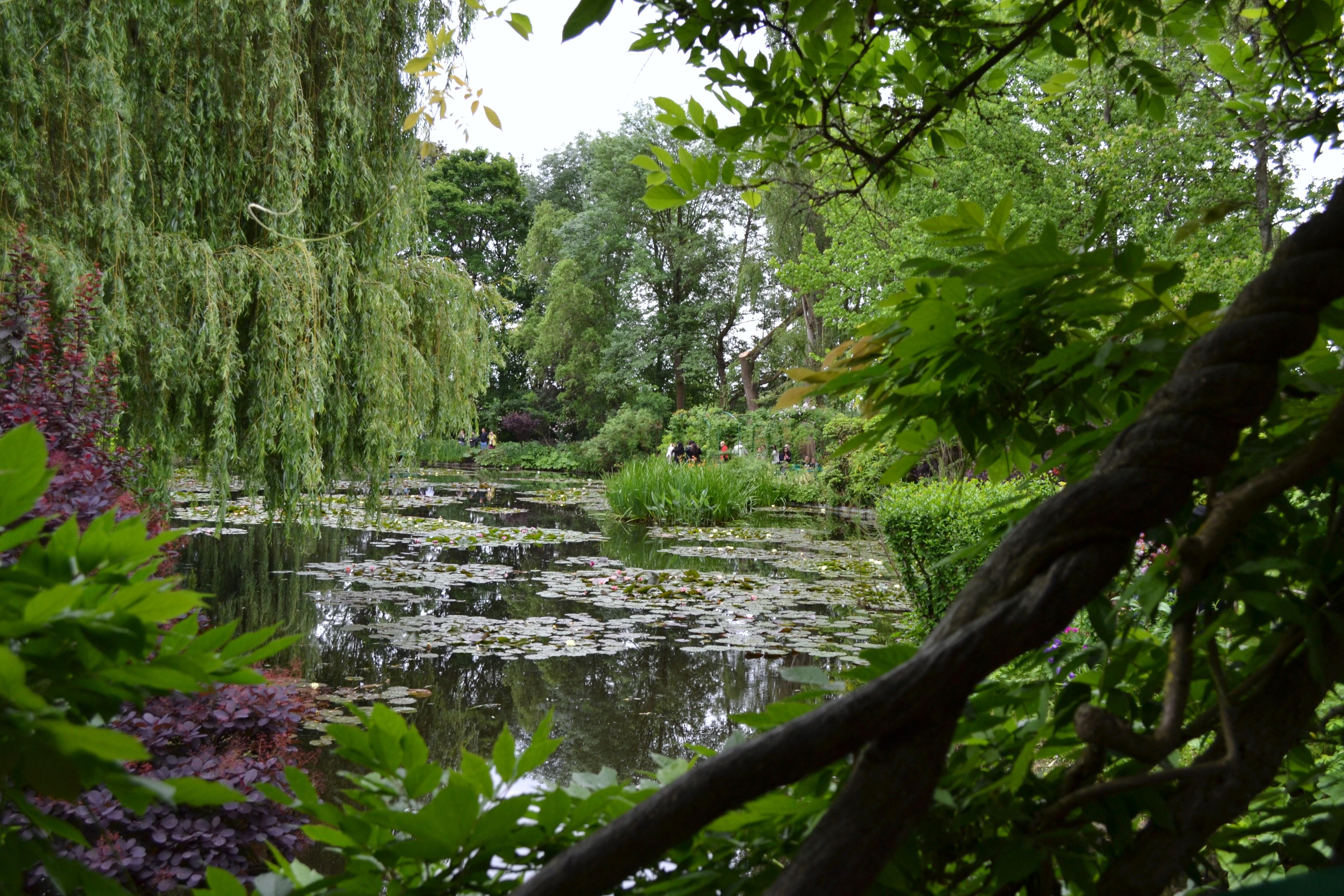 Fondation monet la maison du peintre et le jardin de - Les plus beaux plans de maison du monde ...