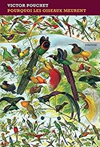Couverture de Pourquoi les oiseaux meurent