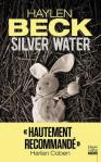 Couverture de Silver Water