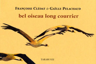 Couverture de Bel oiseau long courrier