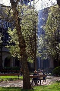 Le jardin du musée des beaux-arts de Lyon