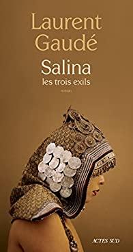 Couverture du roman Saline les trois exils