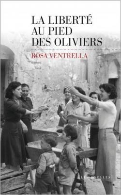 Couverture du roman Au pied des oliviers de Rosa Ventrella